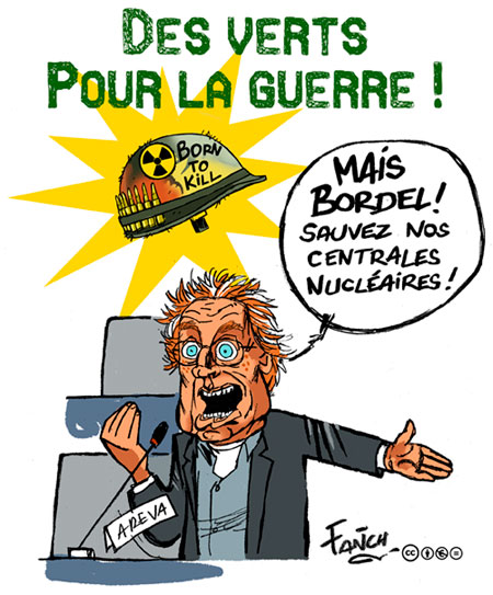 Europe Ecologie - Les Verts - Page 18 Cohn-bendit-et-le-Mali